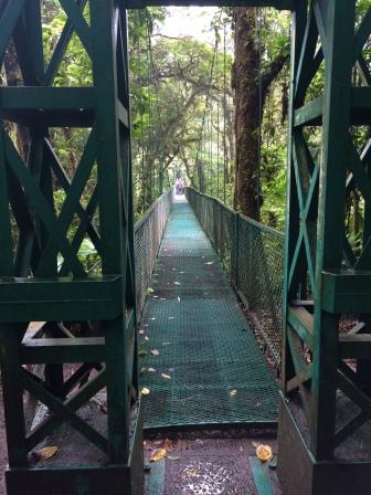 One of many suspension bridges